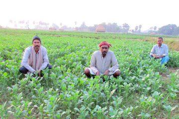 bihari farmers