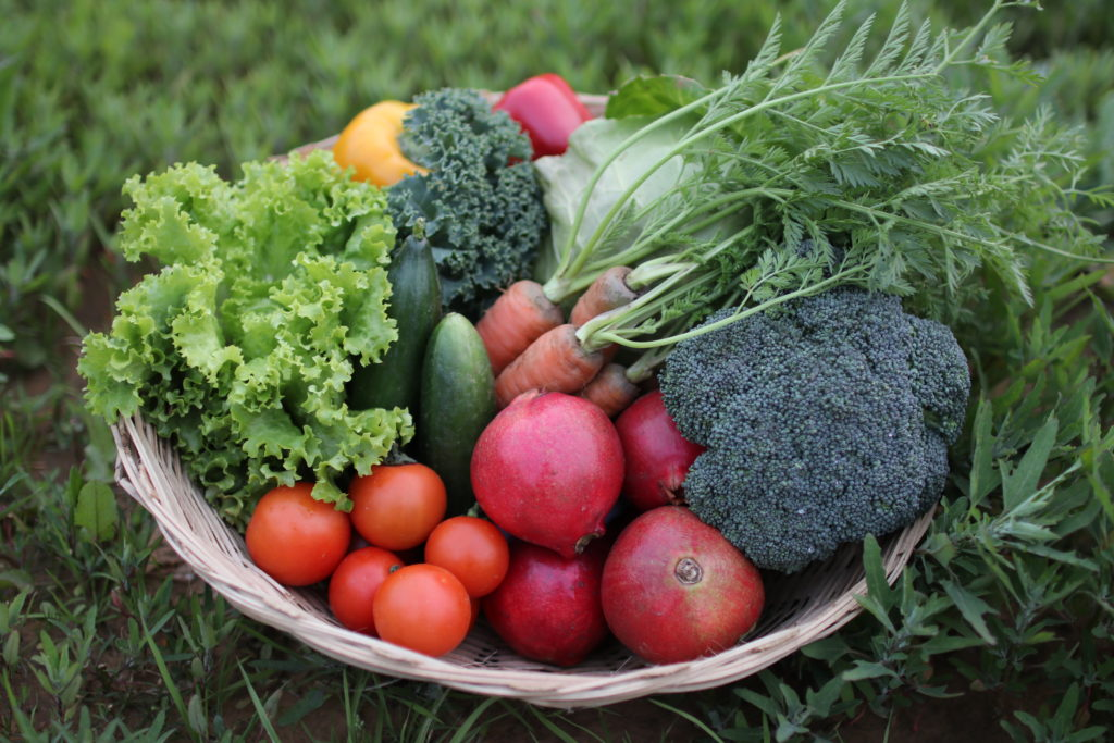 Organic vegetables-photo by Hasora - Pure & Eco India